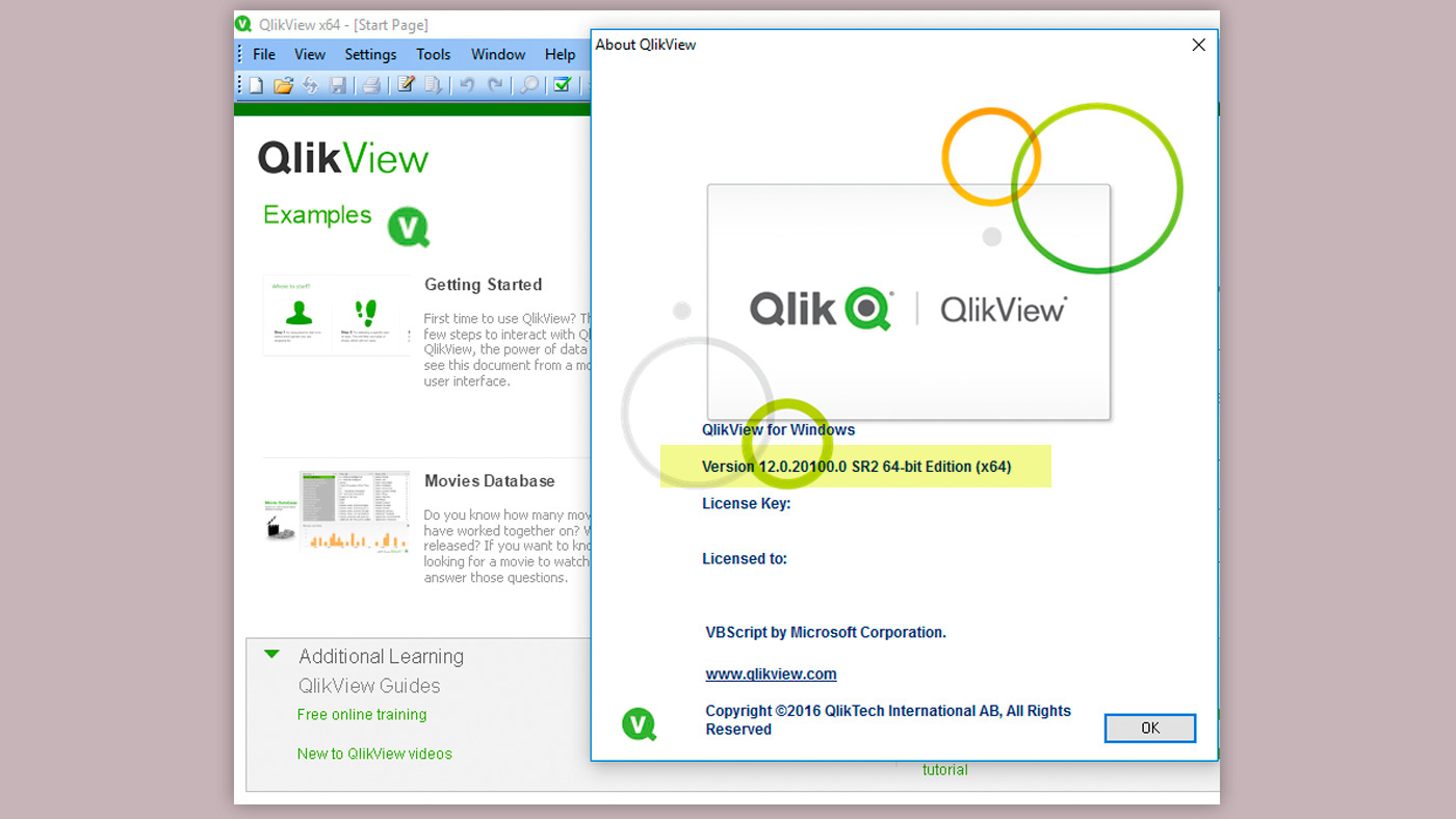 Qlik View version