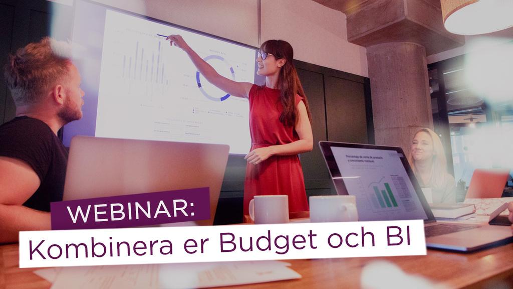 Webinar: Integrera Qlik och Planacy – Förenkla och förädla er budgetprocess